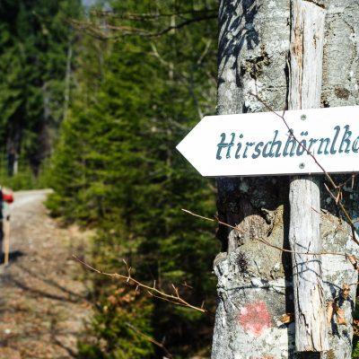 Weg zum Hirschhörnlkopf