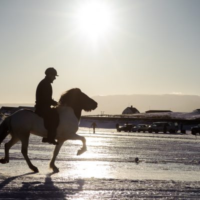 Horse race on Lake Myvatn